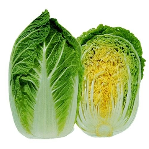 Heirloom MICHIHILI Napa Chinese Cabbage❋4000 SEEDS❋Asian Greens❋COMBINE SHIPPING ()