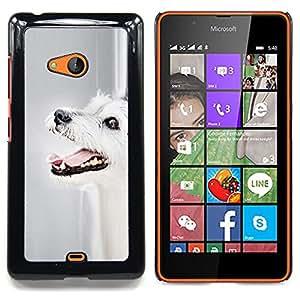 Ihec Tech Parson Russell Terrier Perro Perro Mutt / Funda Case back Cover guard / for Nokia Lumia 540