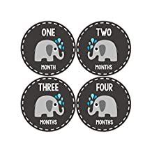 Months In Motion - Baby Month Stickers - Monthly Baby Sticker for Boys or Girls - Elephants (1084)