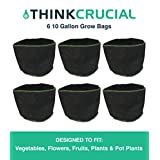 "6PK 10 Gallon Fruit & Vegetables Reusable Grow Bag, 13"" tall & 15.5"" soft-sided Container, Perfect Grow Pot for Flowers, Herbs, Tree Seedlings, Vegetables including Tomatoes and Potatoes, Fruits, Indoors or Outdoors, Comparable to Smart Pots 1 Gallon Grow Bags"