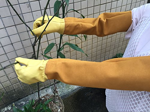 Durable Leather Rose Pruning Gardening Gloves Puncture Resistant,Yard Work Gloves Pruning Gloves for Men Women(HCT08-US) (# M)