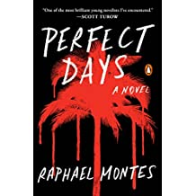 Perfect Days: A Novel (English Edition)
