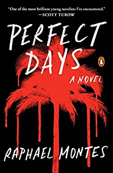 Perfect Days: A Novel by [Montes, Raphael]