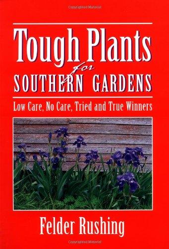 Southern English Garden - 9