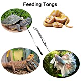 DEECOOYA Feeding Tongs 15 inch Long Handle Aquarium Tweezers Stainless Steel Straight and Curved Forceps for Reptile Snake Lizard Gecko Spider Fish Feeding, Polished Silver