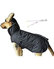 PETCEE Dog Snowsuit is Wearable on Both Sides