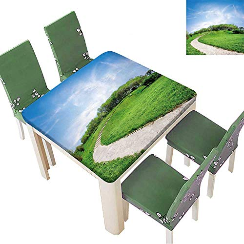 Printsonne Indoor/Outdoor Spillproof Tablecloth Road on a Green Hill in Spring Day Restaurant Party 50 x 50 Inch (Elastic -