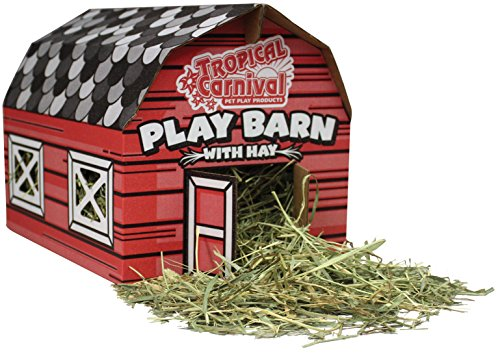 51tVRJpFESL - F.M. Brown's Tropical Carnival Play Barn Timothy Hay Rabbits, Guinea Pigs, Chinchillas, Hamsters Gerbils, 100% Edible, Made Non-Toxic Vegetable Ink