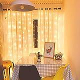Cortina de luces, AGM 8 Modos Cadena de Luces, 3x3m 300LED luces de Navidad Blanco Cálido con Decoración de Concha…