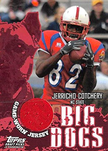jerricho cotchery jersey