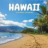 Hawaii 2018 Wall Calendar: Hawaii Photography, 8.5 x 8.5, Mini Calendar, Wall Calendar (Cute Calendar) (Hawaii Calendars)