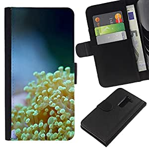 All Phone Most Case / Oferta Especial Cáscara Funda de cuero Monedero Cubierta de proteccion Caso / Wallet Case for LG G2 D800 // Nature Beautiful Forrest Green 61
