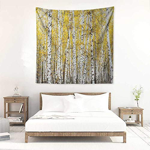 Forest Square Tapestry Autumn Birch Forest Golden Leaves Woodland October Seasonal Nature Picture Print Tapestry for Home Decor 63W x 63L INCH Yellow Grey