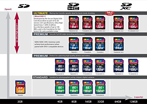 Transcend 8 GB High Speed Class 10 UHS Flash Memory Card TS8GSDHC10U1
