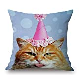 beautifulseason 20 x 20 inches / 50 by 50 cm cat pillowcase,2 sides is fit for monther,boy friend,pub,chair,coffee house,her