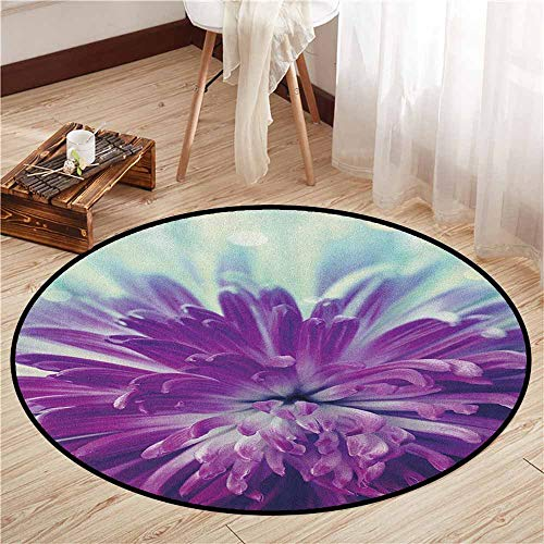 Area Round Rugs,Dahlia,Violet Colored Blooming Dahlia Close Up with Petals in Pale Sunshine Floral,Rustic Home Decor,2'11