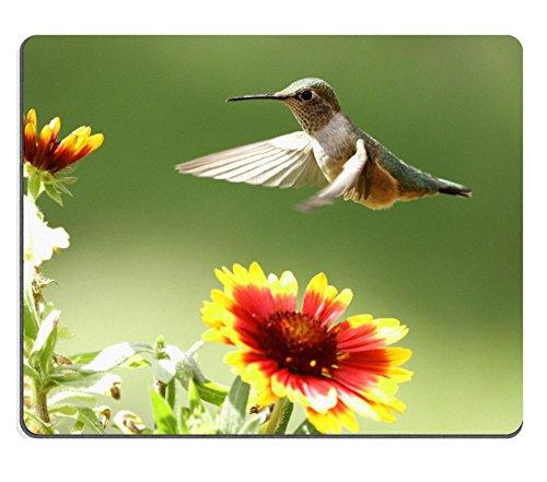 Liili Mouse Pad Natural Rubber Mousepad IMAGE ID: 16999851 Broad tailed hummingbird female Selasphorus platycercus