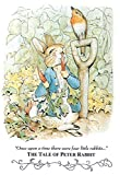 Beatrix Potter Tale Peter Rabbit Art Print POSTER cute 13 x 19in