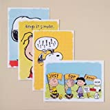 Brighten someone's day with these inspirational DaySpring encouragement cards featuring Charles M. Schulz's beloved Peanuts characters.    DaySpring Christian cards and gifts give you just the right ways to express your faith.