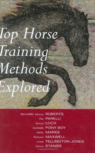Top Horse Training Methods