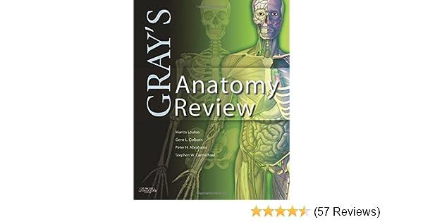 Gray S Anatomy Review 9780808924036 Medicine Health