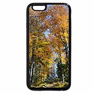 iPhone 6S Plus Case, iPhone 6 Plus Case, Forest fall 1