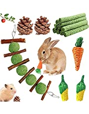 Werfeito 16 Pack Rabbit Chew Toys Set, Natural Bunny Toys for Dental Health, Handmade Bunny Toys for Rabbits, Apple Sticks Grass Balls Toys Gifts for Rabbit Bunny Hamster Small Animals