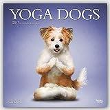 Yoga Dogs 2017 Square