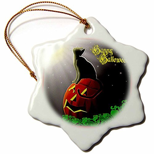 Christmas Ornament Dawn Gagnon Photography Halloween Designs - Black Cat Gazing at the moon Halloween design - Snowflake Porcelain Ornament ()