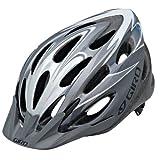 Giro Indicator Bike Helmet, Titanium/Silver