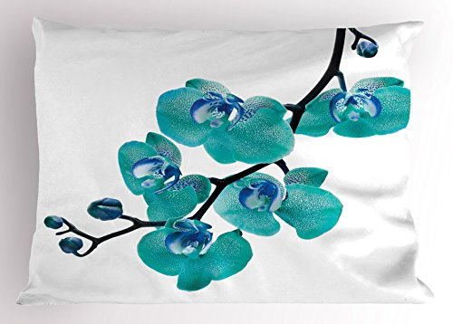 - Lunarable Aqua Pillow Sham, Blossoming Orchid Foliage Arrangement Spring Season Inspired Tropical Plant Theme, Decorative Standard Queen Size Printed Pillowcase, 30 X 20 Inches, Aqua Blue Black