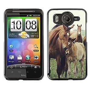 A-type Arte & diseño plástico duro Fundas Cover Cubre Hard Case Cover para HTC G10 (Horse Cub Nature Foal Animal Summer)