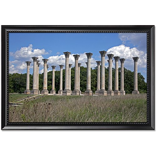 ClassicPix Framed Print 11x17: National Capitol Columns, View 2, United States National (National Capitol Columns)