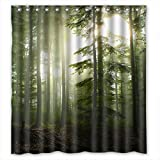 """Rural scenery, forest landscape Bathroom Polyester Shower Curtain 66(W)"""" x 72(H)"""""""