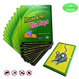 Garsum 10 Pack/Mouse Glue Boards,Sticky Traps for Mice,Large Rat Glue Pads,Extra Sticky Traps with Peanut Butter Large Capture Area,Catch Mouse Indoor and Outdoor