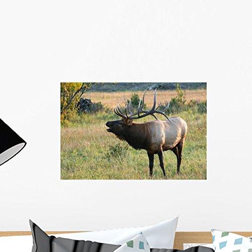 Wallmonkeys Bugling Rocky Mountain Elk Wall Decal Peel and Stick Graphic WM230387 (18 in W x 12 in - Elk Bugling Decal