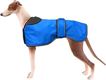 Adjustable Vest Morezi Dog Raincoat with Reflective Bar Lurchers and Whippets 0608 Rain//Water Resistant Dog Raincoats for Greyhounds