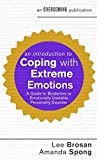 An Introduction to Coping with Extreme Emotions: A Guide to Borderline or Emotionally Unstable Personality Disorder