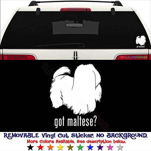 GottaLoveStickerz Got Maltese Dog Pet Permanent Vinyl Decal Sticker for Laptop Tablet Helmet Windows Wall Decor Car Truck Motorcycle - Size (10 Inch / 25 cm Tall) - Color (Gloss Black)