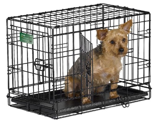 MidWest 22' iCrate Double Door Folding Metal Dog Crate w/ Divider Panel, Floor Protecting 'Roller' Feet & Leak-Proof Plastic Tray; 22L x 13W x 16H inches, XS Dog Breed