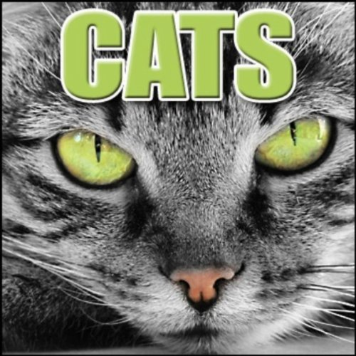 Cats: Sound Effects