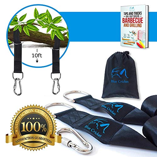 Tree Swing Hanging Straps Kit- 2 10ft Straps Hold 2200lbs + 2 Safe Secure Lock Carabiners- Hammock Hanging Kit- Perfect for Tire and Tree Swing, Hammock, Swing Straps, Carry Travel ()
