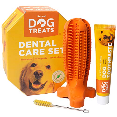 Natural Dog Treats Toothbrush Stick and Toothpaste Beef Flavor Dental Care Cleaning Set, 100% Natural Rubber Chew Toy…