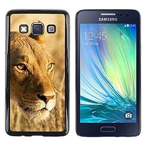 Paccase / Dura PC Caso Funda Carcasa de Protección para - Lion Beige Yellow Nature Summer Sun - Samsung Galaxy A3 SM-A300