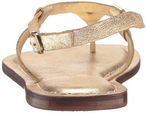 Metallic Merit Flat Bernardo Suede Gold Women's Sandal 4ax4XRwBn