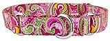 Country Brook DesignÃ'Â Pink Paisley Martingale Dog Collar-S