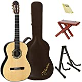 Takamine H8SS-KIT-2 Classical Nylon String Acoustic Guitar with Hard Case & ChromaCast Accessories