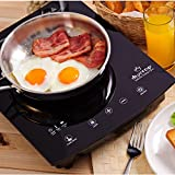 Duxtop 8310ST 1800-Watt Portable Sensor Touch Induction Cooktop, Black