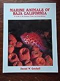Marine Animals of Baja California, Daniel W. Gotshall, 0930118154