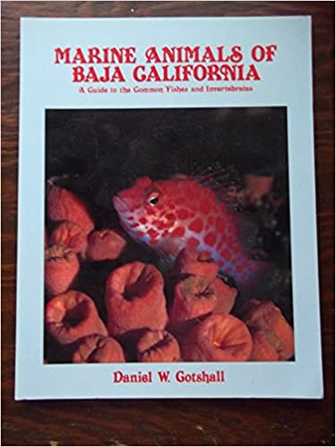 A Guide to the Common Fishes and Invertebrates Marine Animals of Baja California